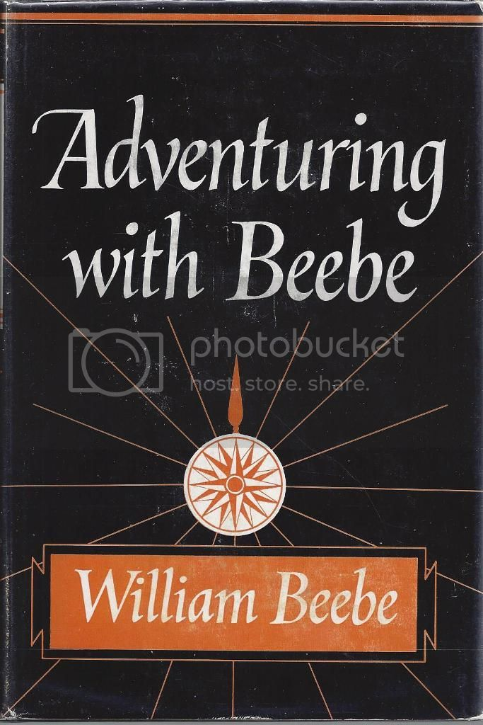 Image for Adventuring with Beebe