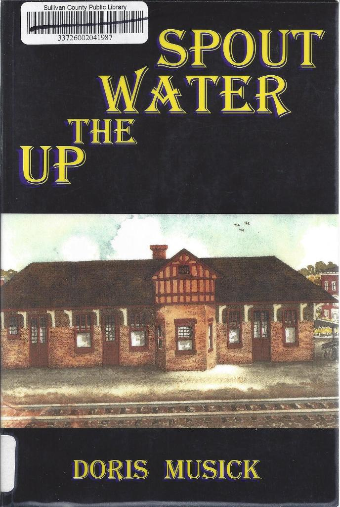 Image for Up the Water Spout